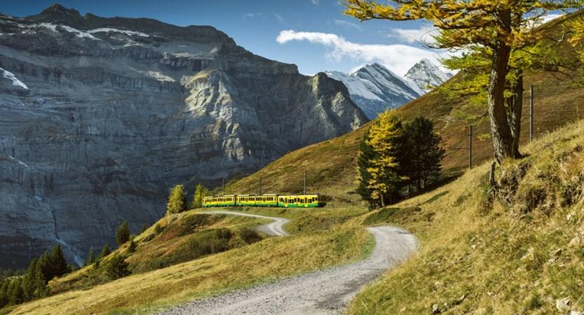 Wengernalpbahn Train Bernese Oberland Switzerland
