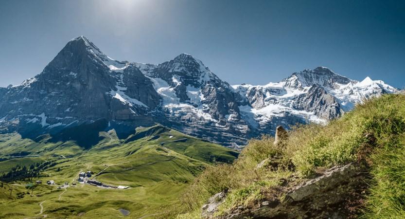 Kleine Scheidegg Bernese Oberland Switzerland (1)