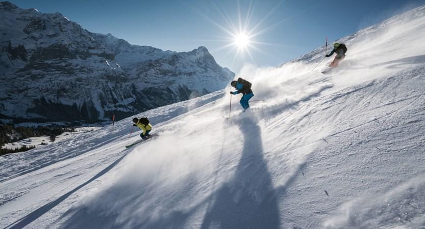Winter Ski Grindelwald Bernese Oberland Switzerland