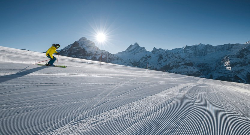 Grindewald Winter Ski Oberjoch