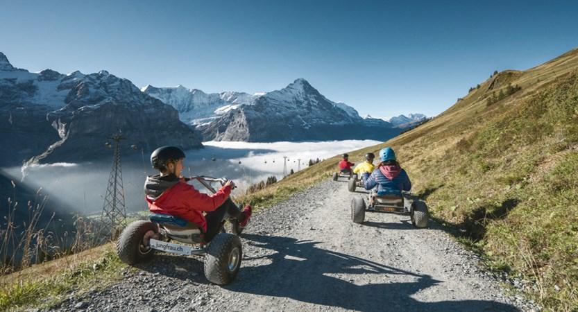 Grindelwald Mountain Carting Bernese Oberland Switzerland