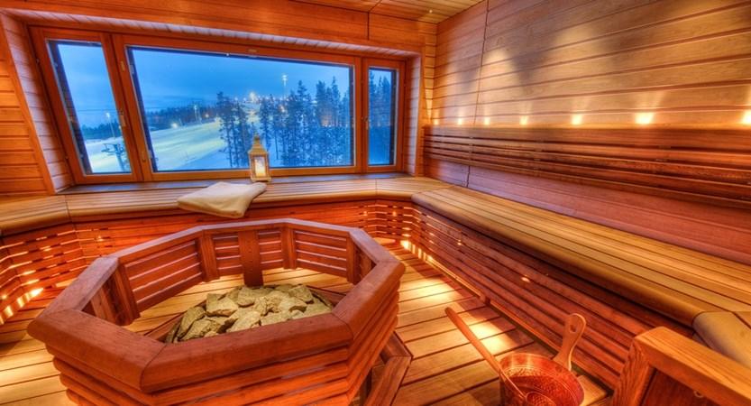 Scenic Sauna in the Panorama