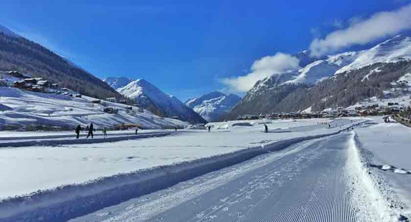 italy_livigno_cross-country-skiing.jpg
