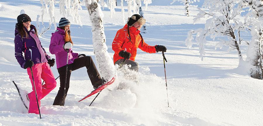 Winter Walks Snow-Shoeing