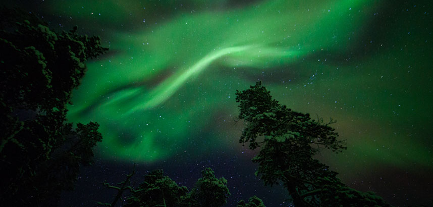 Northern Lights activities at Muotka Wilderness Lodge