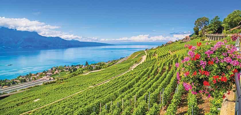 A Taste of Switzerland -  Escorted Tour