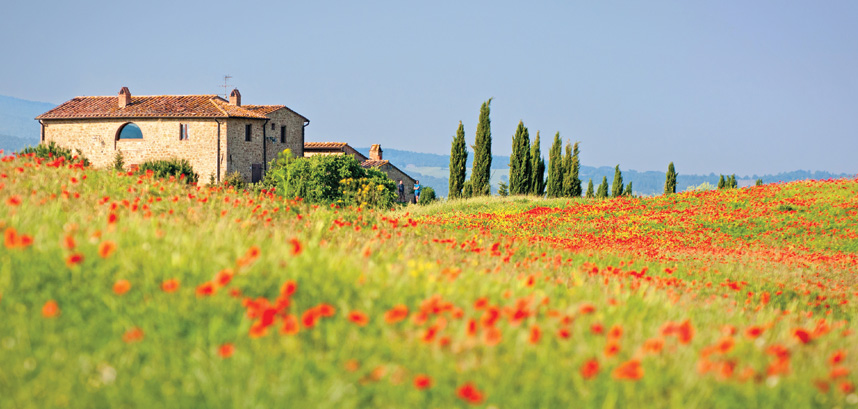 View of Tuscany landscape and poppiest