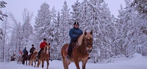 Horse-Riding Safari