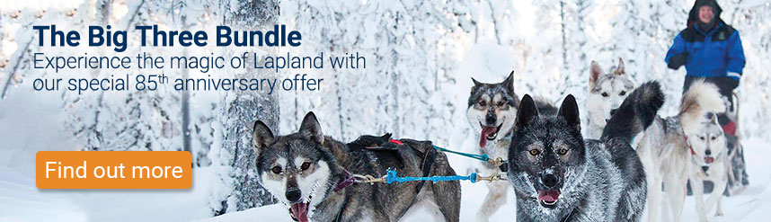 The Big Three Ski Bundle